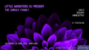 Little Monsters DJ present The Unruly Family